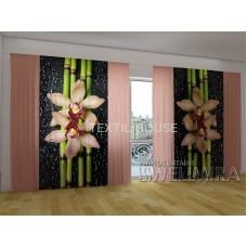Панорама Объемная 3D ФотоШтора Кремовые орхидеи и бамбук