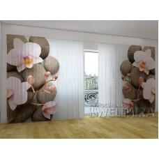 Панорама Объемная 3D ФотоШтора Венские орхидеи