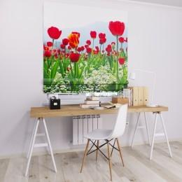 Римская штора  с фотопечатью Красные тюльпаны