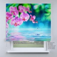 Римская штора  Розовая орхидея