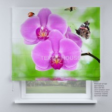 Римская штора Лиловая орхидея