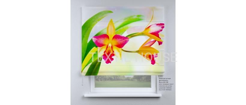 Римская штора  Дикая орхидея