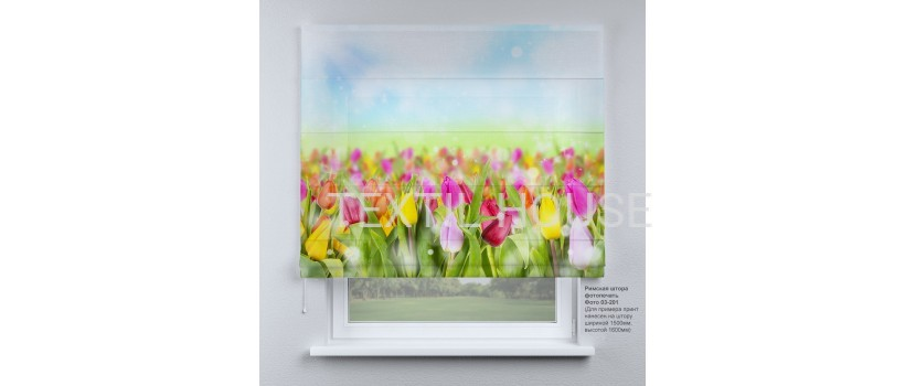 Римская штора  Весенние тюльпаны